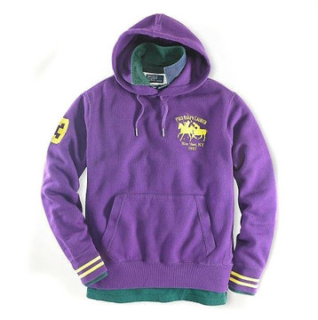 ralph lauren hoodie jacket two pony jaune purple,pulls ralph lauren zip